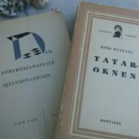 tataroknen-300x225